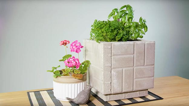 Promix_gardening_DIY_PaverPlanter_05