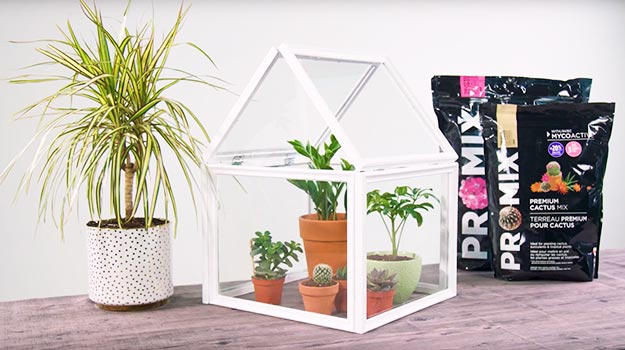 Promix_gardening_DIY_Greenhouse_header