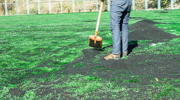 Can You Add Peat Moss To Your Lawn?
