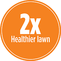 2x healthier lawn with PRO-MIX FALL & WINTER LAWN FERTILIZER 10-0-32