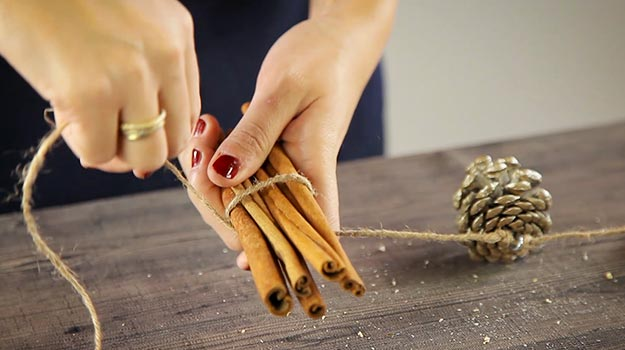 Choose 5 cinnamon sticks and wrap them together with the rope.