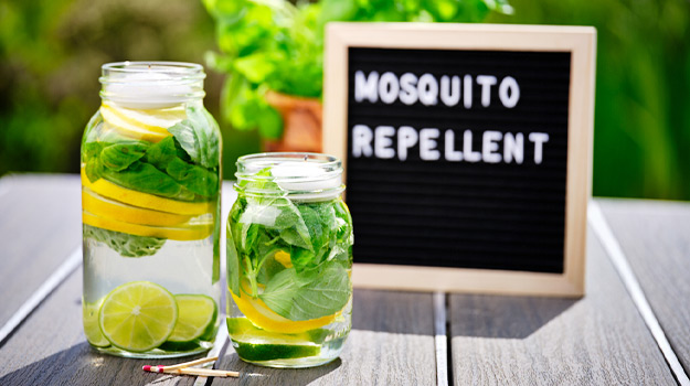 Mosquito repelling candles diy