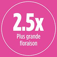 2.5x plus de grande floraison avec PRO-MIX ENGRAIS À JARDIN POUR FLEURS BASE ORGANIQUE 12-28-12