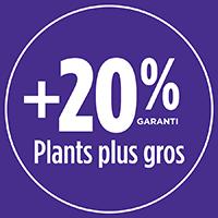20% de plants plus gros avec PRO-MIX TERREAU PREMIUM BIOLOGIQUE POUR PELOUSE