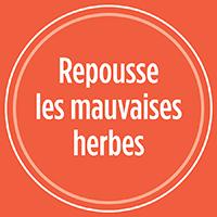 Repousse les mauvaises herbes de votre pelouse avec PRO-MIX SEMENCES GAZON ANTI-MAUVAISES HERBES