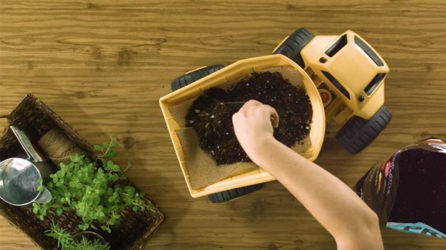 Add organic vegetable and herb soil