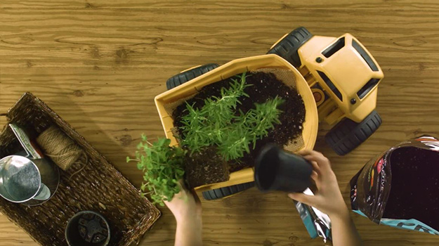 Place your herb plants. Cover with soil and water