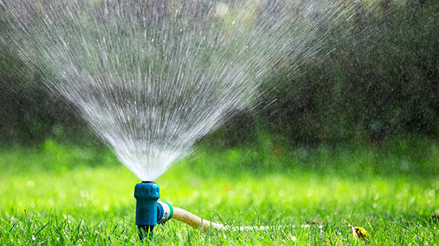 Watering tip for your new lawn