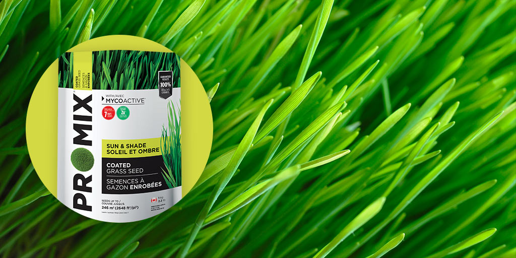PRO-MIX SUN & SHADE COATED GRASS SEED