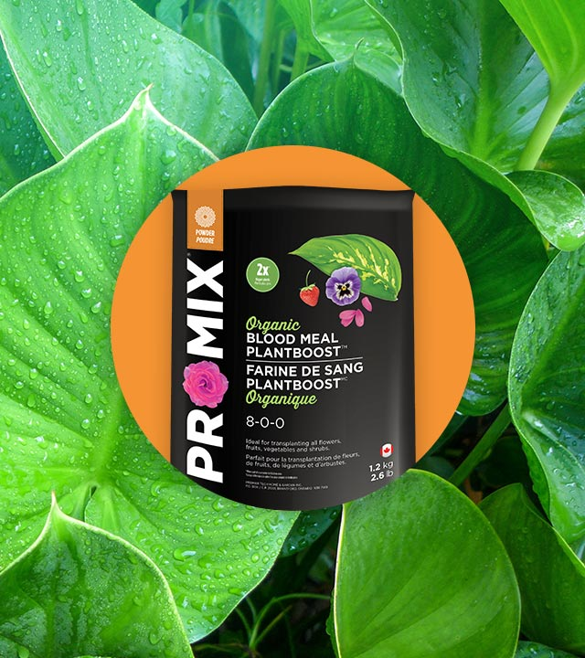 PRO-MIX ORGANIC BLOOD MEAL PLANTBOOST 8-0-0