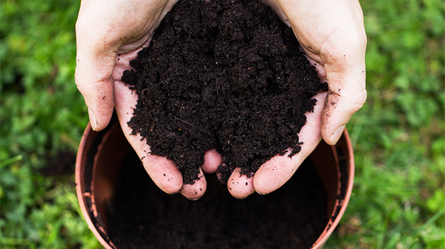 How to make the difference between earth and soil