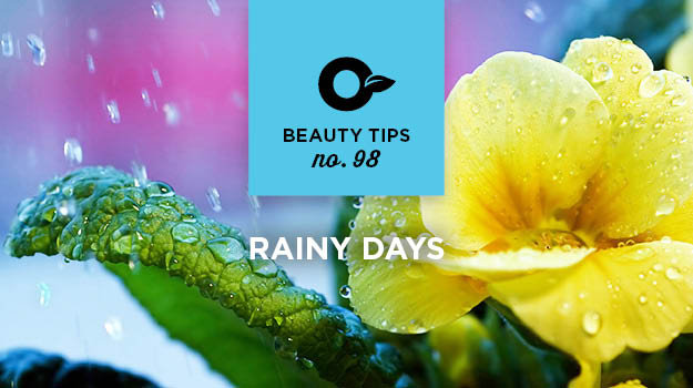 promix-gardening-rainy-days-tips98