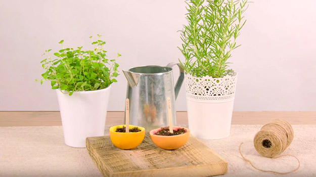 Que faire au jardin en avril jardiner avec pro mix - Que planter en avril ...