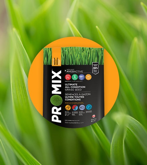 PRO-MIX ULTIMATE ALL CONDITION GRASS SEED
