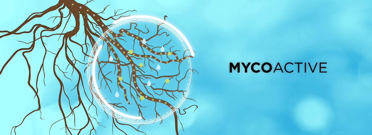 PRO-MIX MYCOACTIVE technology means bigger, healthier and more prolific plants.