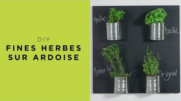 Embedded thumbnail for Fines herbes sur ardoise