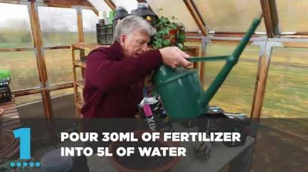 Embedded thumbnail for How to fertilize organically