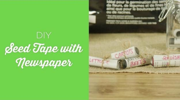 Embedded thumbnail for Newspaper seed tape